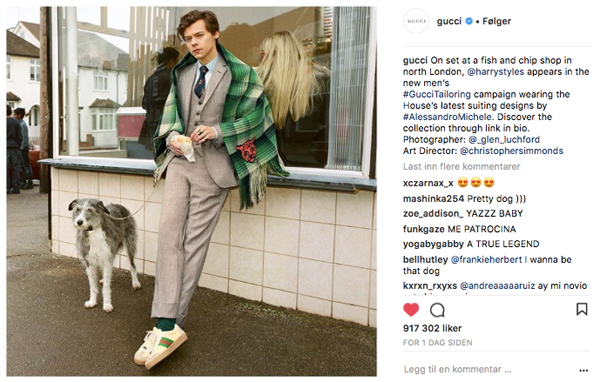 Harry Styles er nytt ansikt utad for Gucci
