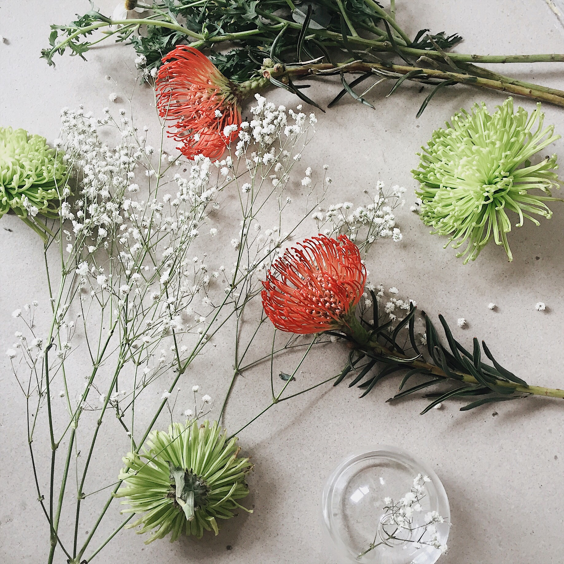 Martine Stenberg blomster