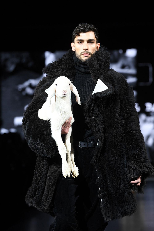 Dolce & Gabbana satte en geit på catwalken